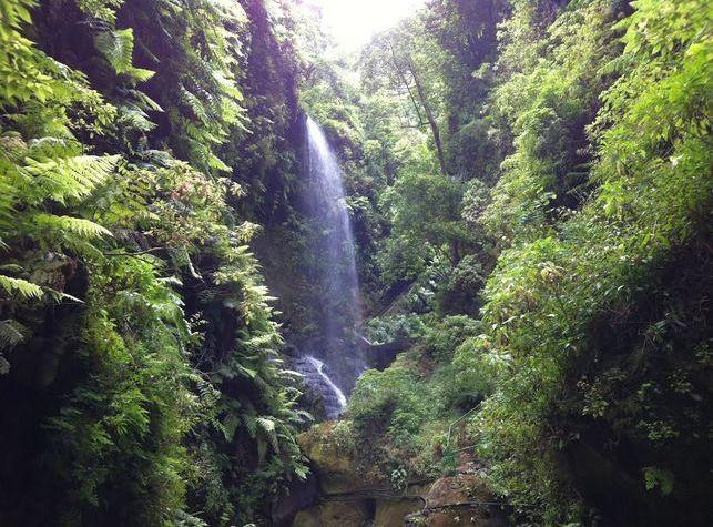 cascada-Los-Tilos_EDIIMA20181130_0775_19.jpg